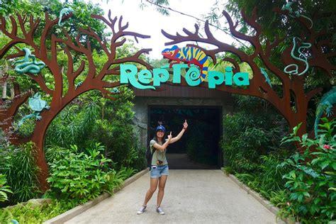 Lakban Fragile Kuning Langka 5 hal yang kebun binatang singapura lakukan lebih baik dari zoo