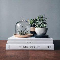 coffee table plants images indoor ferns indoor