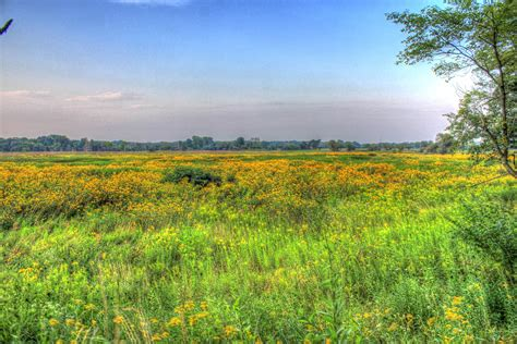 Prairie Gardens Chaign Il by Free Stock Photo Of Another Prairie Landscape At Chain O