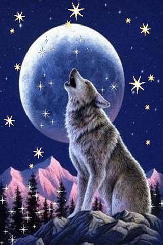 wolf  wallpaper gallery