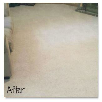 rug cleaners rochester ny carpet cleaning companies rochester ny commercial carpet cleaners