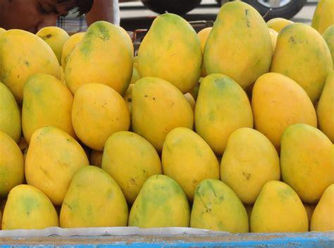 beautiful bangladesh mango fruit