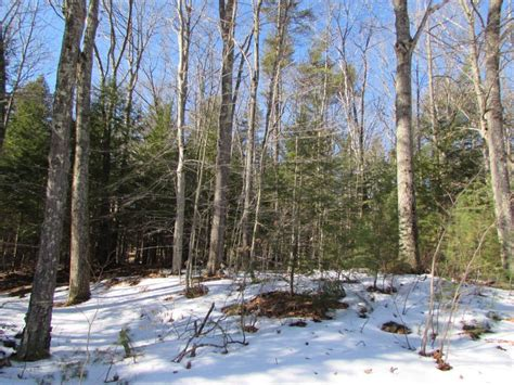 houses for sale weare nh weare nh real estate land acres for sale page 1