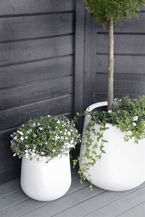 White Garden Pots Modern And Chic Outdoor Pots Diy Better Homes