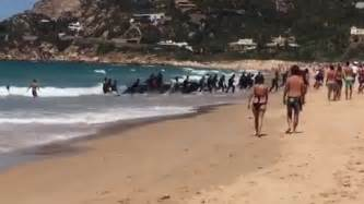 small boat in spanish asylum seekers video shows small boat carrying people