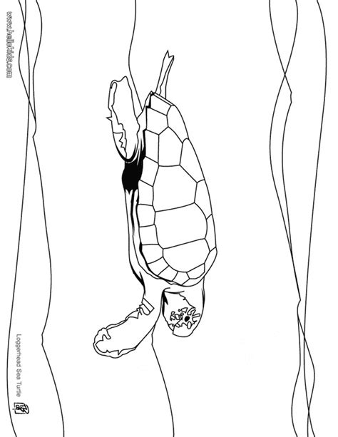 leatherback turtle coloring page leatherback sea turtle coloring page animals town