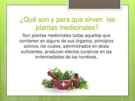 imagenes vectoriales para que sirven plantas medicinales en mexico presentacion final