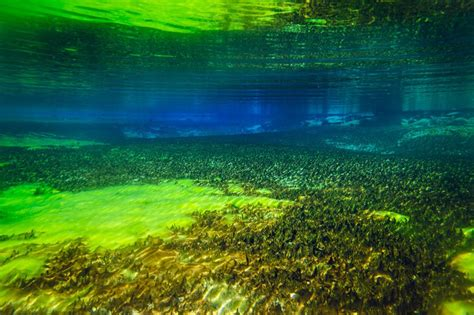 clearest ocean water in the world the clearest lake in the world is in new zealand