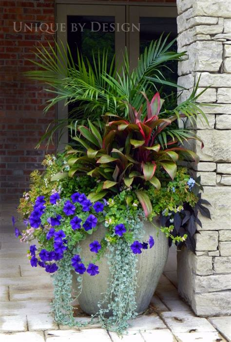 Container Flower Gardening Ideas A Planting In One Large Container Is Much More Dramatic On Your Porch Than Several