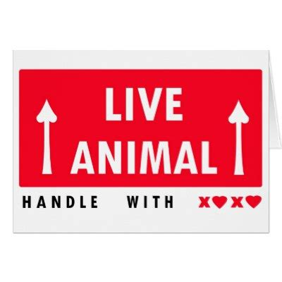 printable live animal stickers live animal transport sticker w information images frompo
