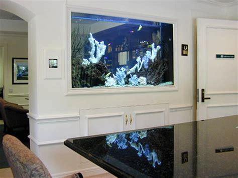 inside wall aquarium have the ultimate fish tank built inside wall fish tank gallery inside wall aquarium blog