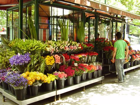 Florist In by Out And About Field Trip Ideas For A Garden Theme