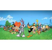 The Looney Tunes Gang  Show Image