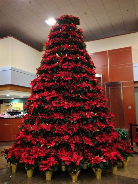 poinsettia christmas tree christmas pinterest