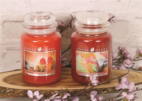 beach party  summer sherbet oz candle jars goose