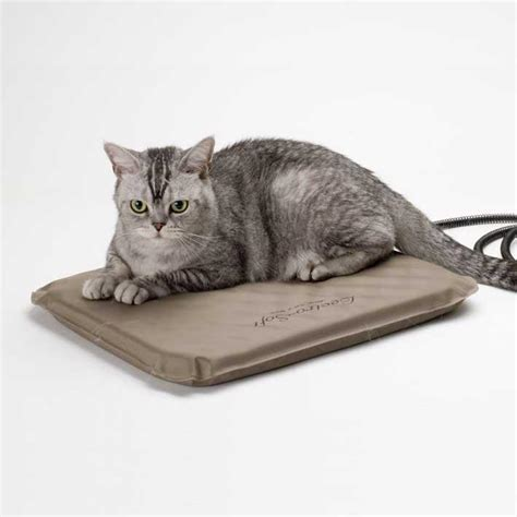 lectro soft outdoor heated cat bed
