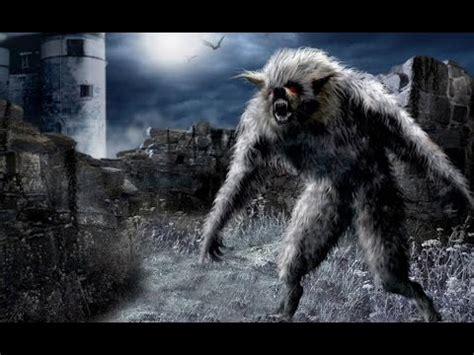 Is A Real Beast by Cryptids And Monsters The Beast Of Gevaudan A Real