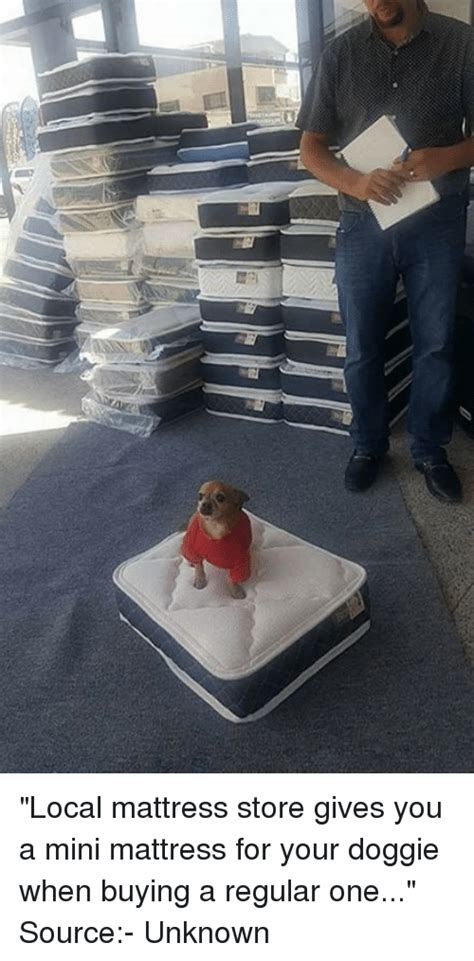 what to look for when buying a mattress local mattress store gives you a mini mattress for your doggie when buying a regular one source