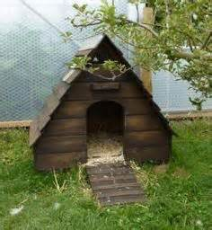 duck housing plans duck house how cute gotta love the furry babies pinterest middle ducks and search