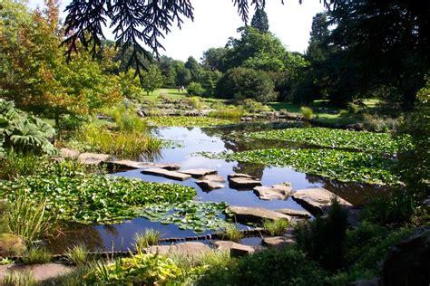 Cambridge Botanical Garden Quot Botanic Gardens Cambridge Quot By Mac Mcfarlane At Picturesofengland