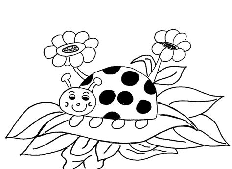 Ady Bird Colouring Pages Ladybird Colouring Pages