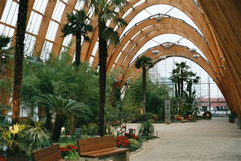 Winter Garden by File Sheffield Winter Garden1 Jpg