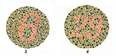 tavola di ishihara sei daltonico ecco test per scoprirlo la nuova