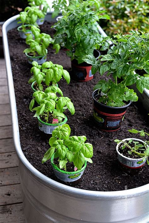 Container Gardening Gardens Container Gardening And Potted Vegetable Garden