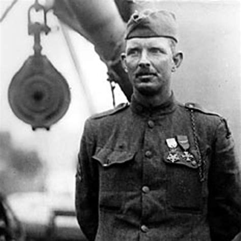 Sergeant York An American Historic Trees Celebration Memorial Gifts American Heritage Trees