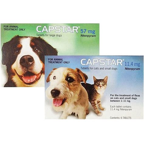 capstar for dogs capstar flea tablets for dogs cats buy