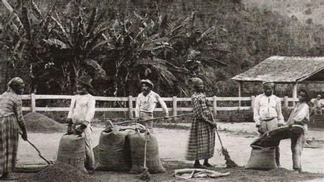 cafe si o no o ciclo do caf 233 no brasil hist 243 ria e geografia