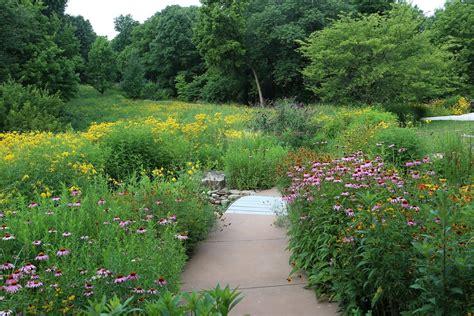 pictures of a garden million pollinator garden caign wild ones