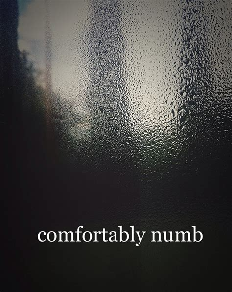 ive become comfortably numb i have become comfortably numb image 3301007 by