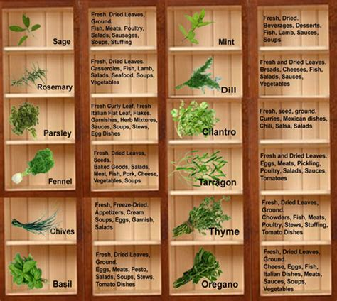 herbal academy using flavorful culinary herbs herbal dietitians online blog national nutrition month put