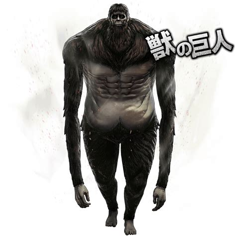 who is the beast titan image beast titan aot png attack on titan wiki