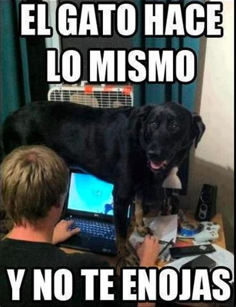 Memes Espaã Ol - 77 best images about spanish memes on pinterest spanish