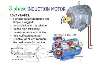 three phase induction motor viva questions 3phase induction motor electronics technology degree
