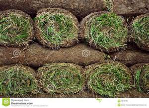 sod cost home depot rolled sod royalty free stock image image 7079796