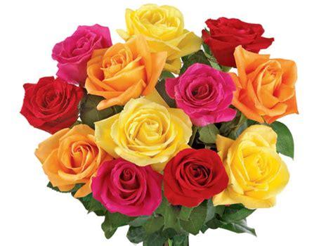 giuliana flores oferta presentes para dia da mulher