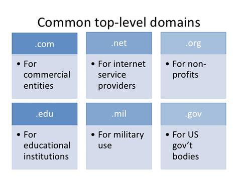 anatomy   domain   url