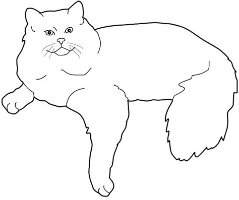 ragdoll cat coloring page coloring ragdoll cat picture