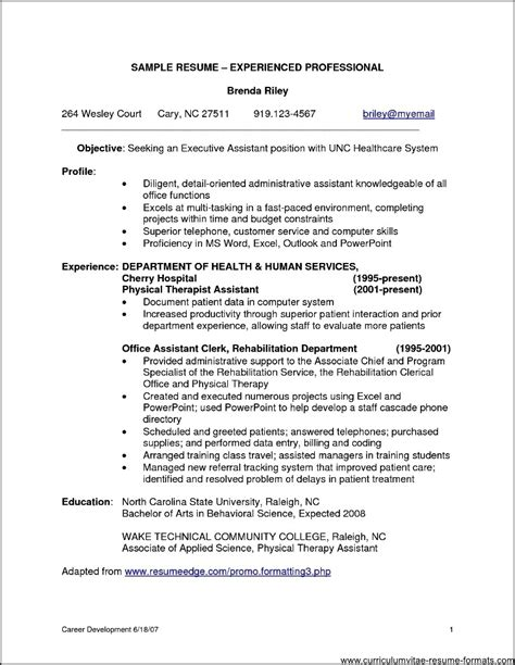 Resume Format For Experienced by Sle Resume Format For Experienced It Professionals