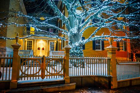 portland maine tree lighting 2017 2017 copper beech tree lighting portland downtown
