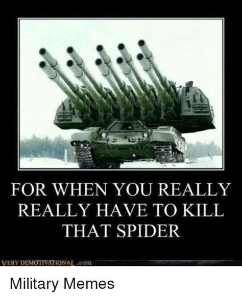 Killing Spiders Meme - for when you really really have to kill that spider very