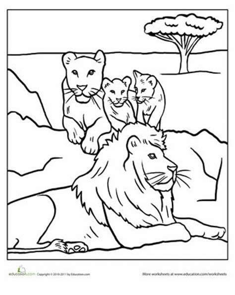 african lion coloring pages 123 best fiar volume 3 images on pinterest the lion