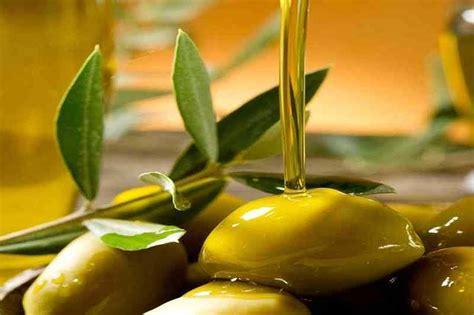 Jenis Dan Minyak Zaitun minyak zaitun dan fakta manfaatnya bagi otak balipost