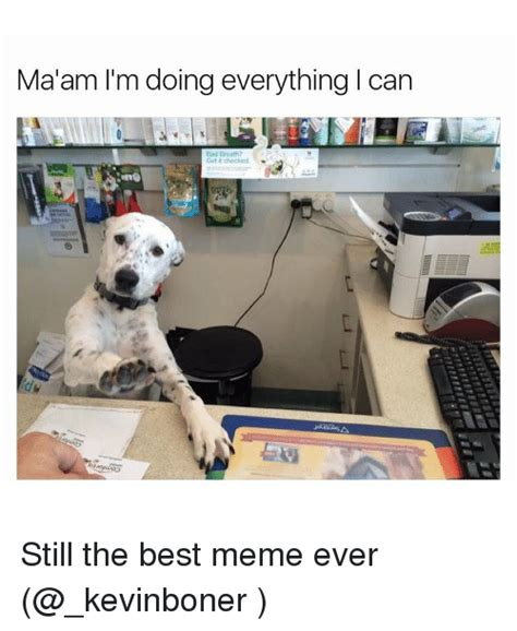 Am I Doing This Right Meme - 25 best memes about best meme ever best meme ever memes