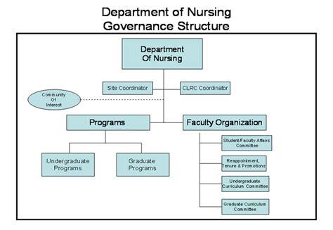 organization pattern of college of nursing department governance structure department of nursing