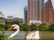swan boats austin buford tower in downtown austin free summer photos of