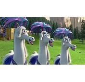 Image Gallery Madagascar 3 Horses